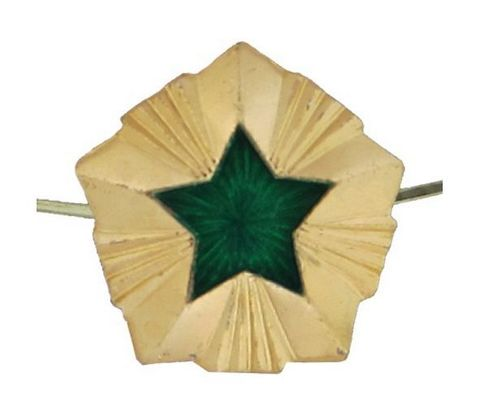 Звезда на погоны мет. 20 мм ФССП (зол. с зел. эмалью)