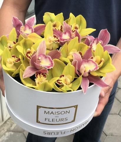 Орхидеи в коробке Maison Des Fleurs