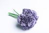 Фиолетовая гвоздика.