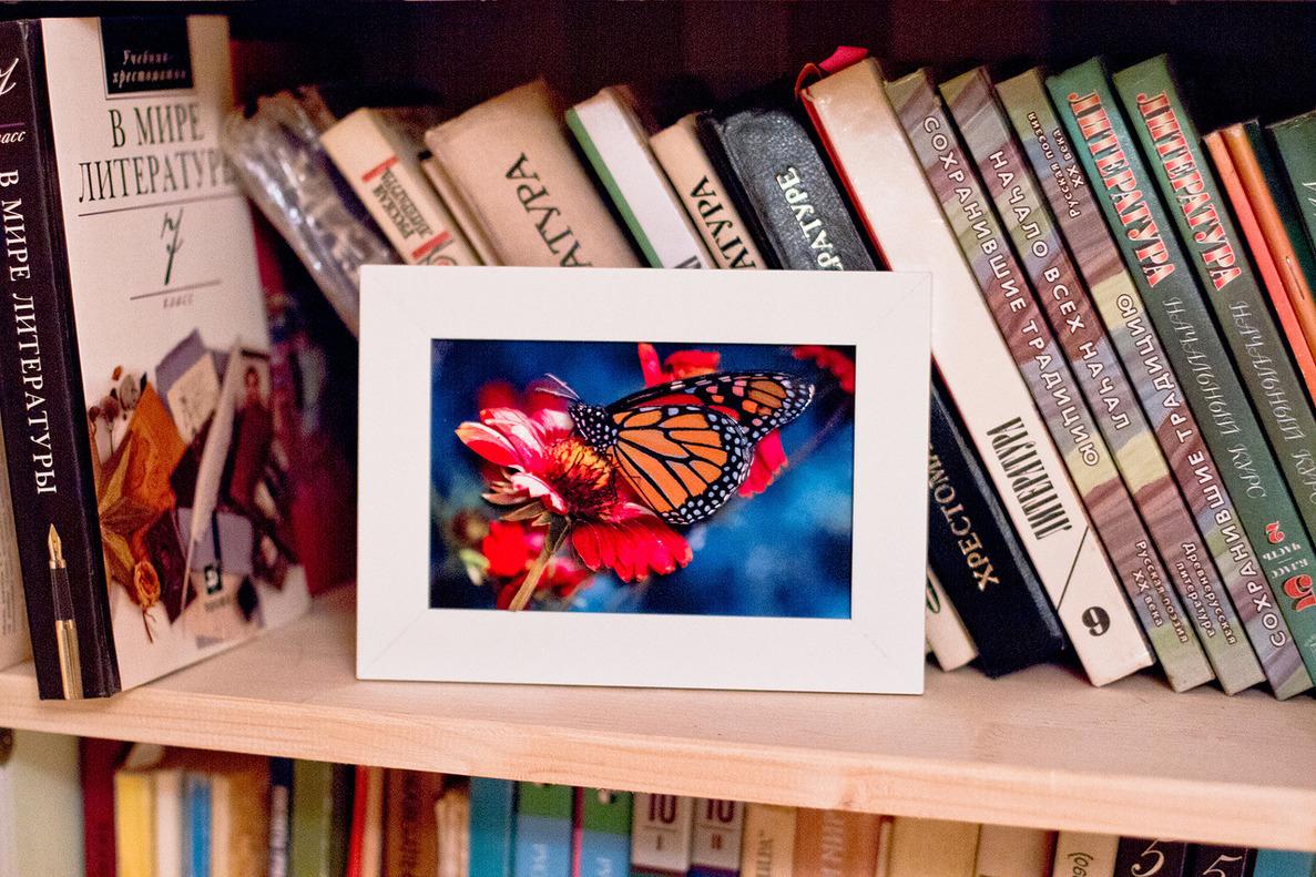 Папертоль Бабочка на гербере — пример собранной оформленной работы.