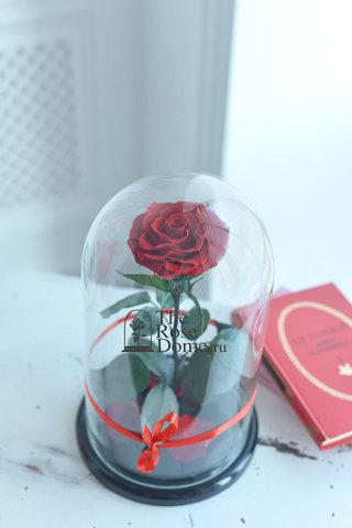 Роза King Выс*Диам*Бутон (30*18*12см) Цвет бордовая