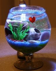 Мини аквариум бокал 2 л