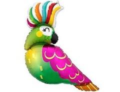 А Фигура, Попугай тропический, 31