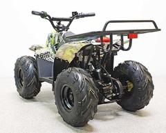 Детский электрический квадроцикл GreenCamel Гоби K51 800W (ножной тормоз)