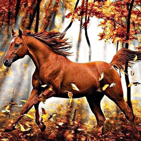 Алмазная Мозаика 40x50 Конь бежит по осеннему лесу (арт. MGL8113 )