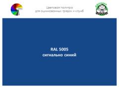 Цвет полимерного покрытия RAL 5005 сигнальный синий | АЙГРЯДКИ!