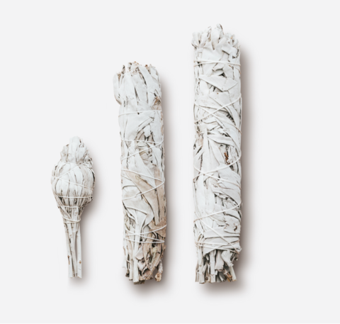 Калифорнийский белый шалфей