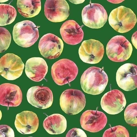 Яблоки на зеленом фоне