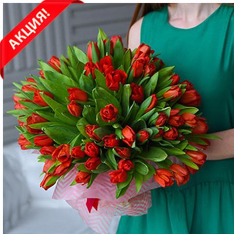Букет 101 красный тюльпан