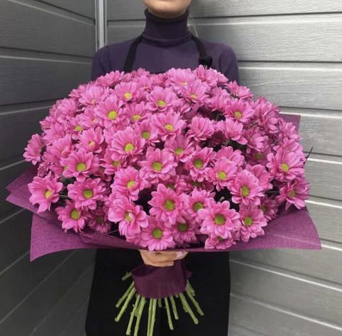 25 кустовых хризантем с оформлением #2538