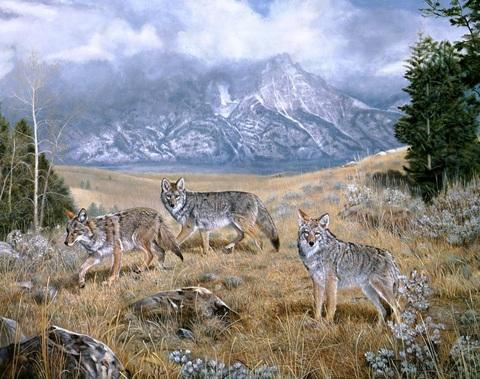 Алмазная Мозаика 40x50 Сезон охоты (арт. S2852 )