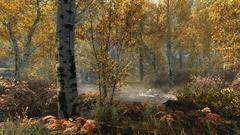 The Elder Scrolls V : Skyrim - Special Edition (для ПК, цифровой ключ)