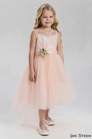 Розовое платье со шлейфом (арт.WB1429)