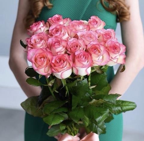 15 голландских роз 60 см джумилия #14157