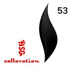 BSG Colloration, №53 Черный