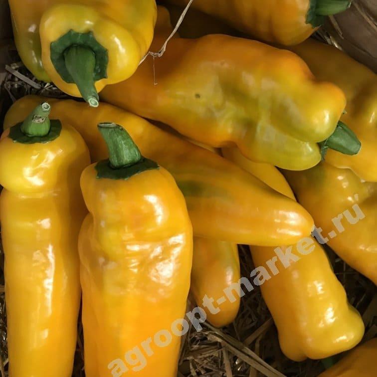 Каталог Палермо Юсмит F1 семена перца сладкого (Rijk Zwaan / Райк Цваан) Пеерец_Юсмит_.jpg