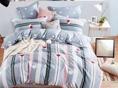 Постельное белье 1.5 спальное Asabella 1393-4S