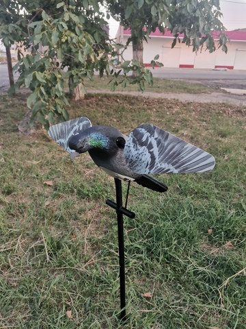 Механическое чучело голубя Lucky Duck