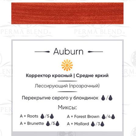 """AUBURN"" пигмент  Permablend"