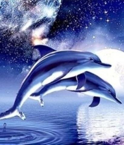 Алмазная Мозаика 30x40 Дельфины плывут на фоне луны  (Арт. MТС3489)