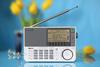 Радиоприемник SANGEAN ATS 909X white/белый