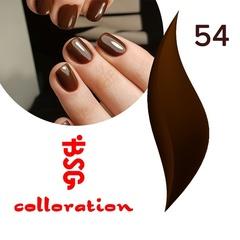 BSG Colloration, №54 Шоколадный