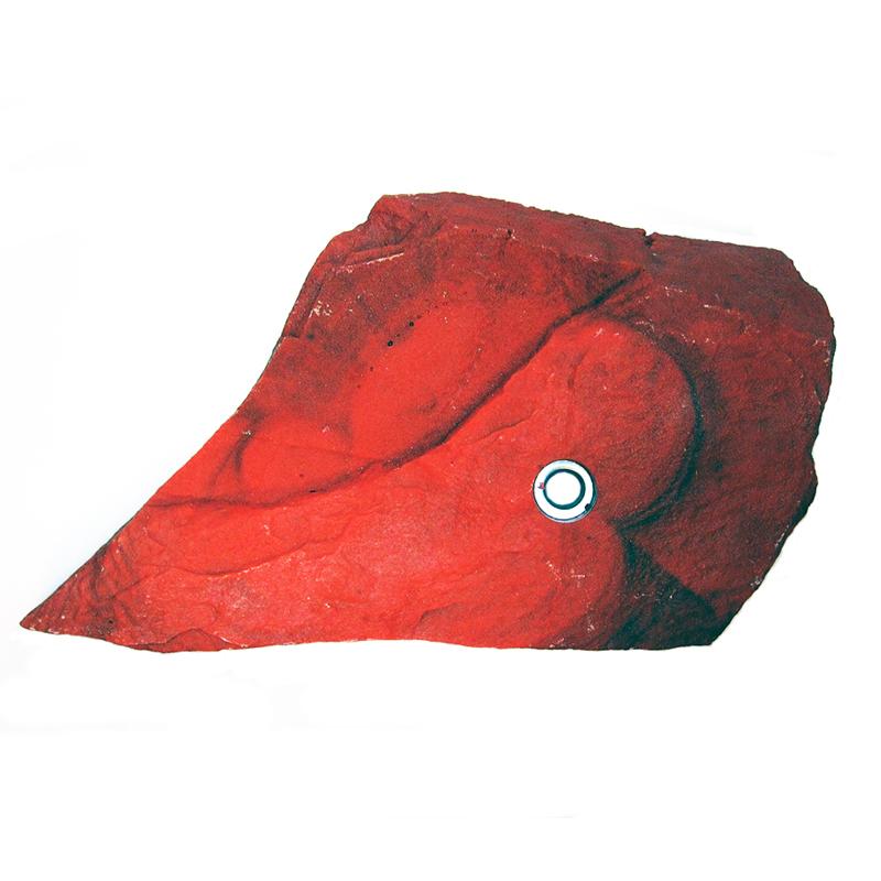 Зацеп Rock Holds №13