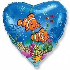 F Сердце Рыбки-клоуны, 18
