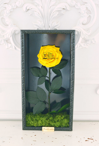 Стабилизированная  Роза в Картине Premium Оптом Размер*Бутон (44х22х8см*11см) Цвет желтый