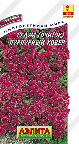 Седум Пурпурный ковер тип ц/п