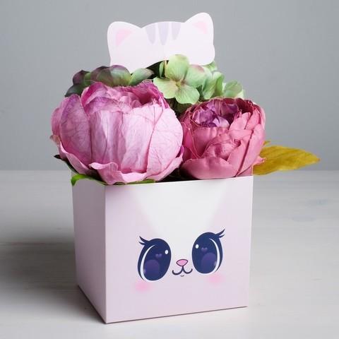Коробка для цветов с топпером «Котик»