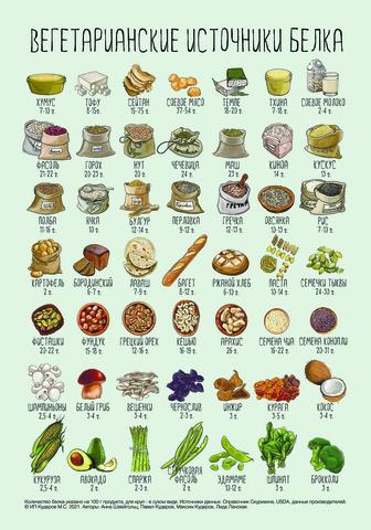 Магнит «Вегетарианские источники белка» А4   Зожник