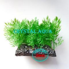 Растение Атман PP-135B, 10см