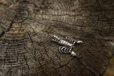 серебряный оберег Скорпион