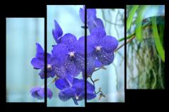 """Модульная картина """"Синяя орхидея"""""""