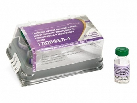 Глобфел-4 иммуноглобулин
