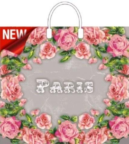 Пакет ПЭ с пластмассовыми ручками 37х34+6 (80) И (Сады Парижа)