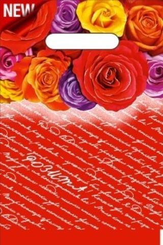 Пакет полиэтиленовый с неусиленной ручкой 20х30 (30) Розита