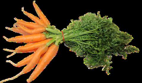Морковь с Ботвой, 500 г
