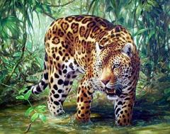 Картина раскраска по номерам 30x40 Хищник в воде
