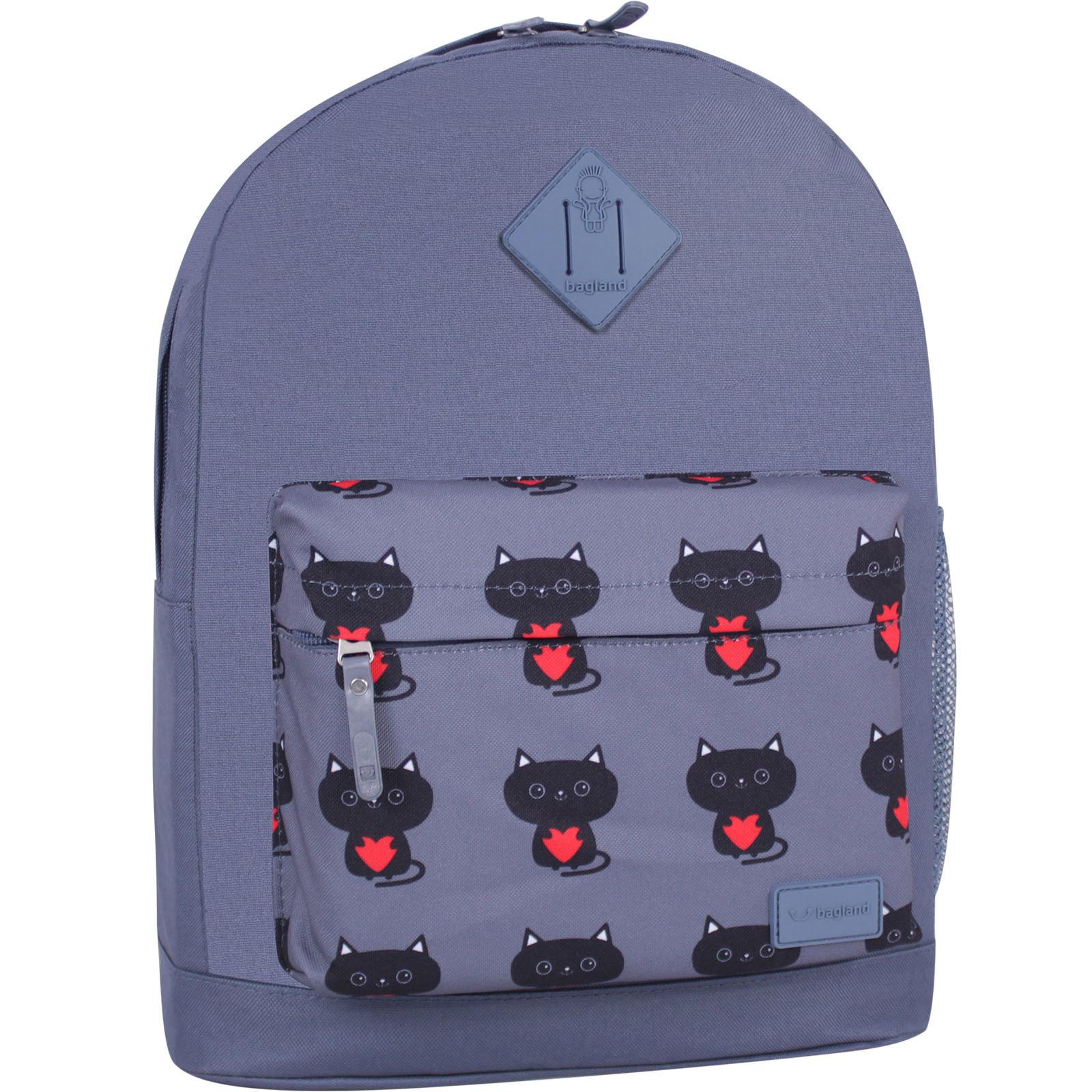 Молодежные рюкзаки Рюкзак Bagland Молодежный W/R 17 л. Серый 750 (00533662) IMG_6457_суб.750_-1600.jpg
