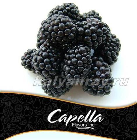 Ароматизатор Capella - Blackberry