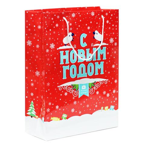 Большой подарочный пакет «С Новым годом!»