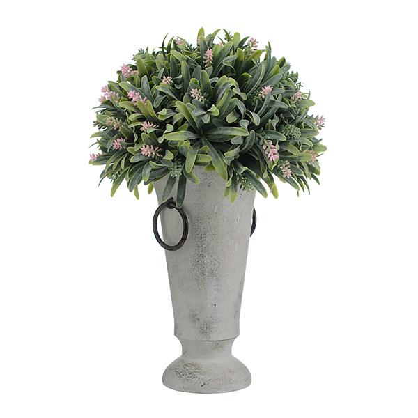 Растение в гипсовой вазе