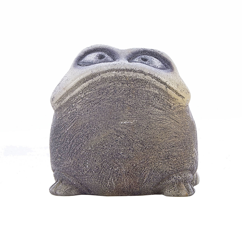 Пятнистая жаба