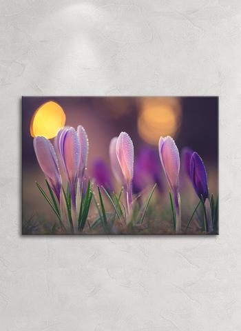 Картина на стекле WhyPro Home Decor Утренняя прохлада, 28х40 см