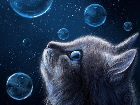 Картина раскраска по номерам 40x50 Котенок и мыльные пузыри (арт. PH9274)