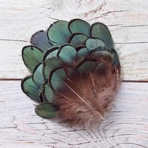 Перо фазана зеленое (20 шт)