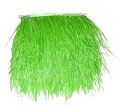 Тесьма  из перьев страуса h 10-15 см.,  салатовый