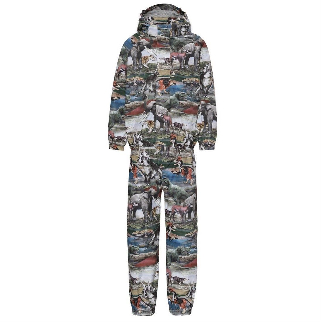Комплект Molo (куртка+брюки) Whalley Ancient Animals
